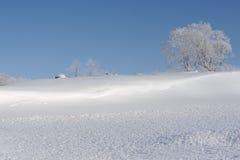 Schneebedeckte Landschaft des Winters mit einem Baum in Hokkaido Lizenzfreies Stockfoto