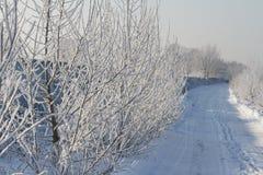 Schneebedeckte Straße des Winters lizenzfreies stockfoto