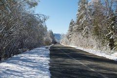 Schneebedeckte Straße des Winters in einem Wald und in einem blauen Himmel Stockfotografie