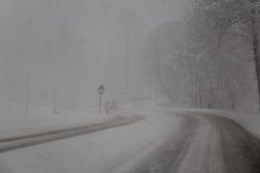 Schneebedeckte Straße im Blizzard schneesturm Blume im Schnee Lizenzfreie Stockfotografie