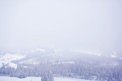 Schneebedeckter Karpatengebirgsnebeliger Wintermorgen ukraine Stockfoto