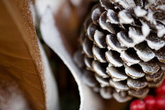 Schneebedeckter Kiefernkegel, -beeren und -blätter der Winter-Weihnachtsjahreszeit Lizenzfreies Stockfoto
