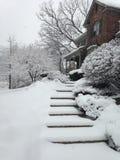 schneebedeckter Tag Stockfotografie