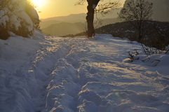 schneebedeckter Tag lizenzfreies stockbild