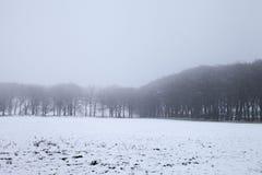 schneebedeckter Tag Stockbild