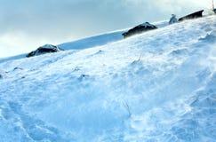 Schneebedeckter und windiger Mountain View des Winters Stockfoto