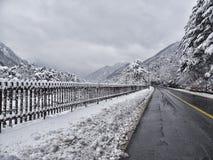 Schneebedeckter Waldweg in den Bergen Stockfotos