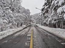 Schneebedeckter Waldweg in den Bergen Stockbild