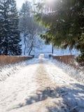 Schneebedeckter Weg im Winterpark, der zu die Brücke führt Stockfoto
