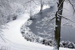 Schneebedeckter Weg und Bäume Gefrorener See Stockfotografie