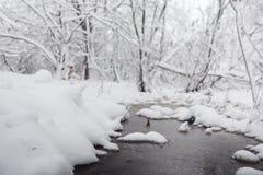 Schneebedeckter Winterpark und -bänke Park und Pier für die Fütterung Stockfotografie