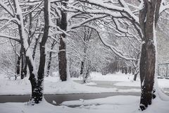 Schneebedeckter Winterpark und -bänke Park und Pier für die Fütterung Lizenzfreie Stockbilder