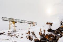 Schneebedecktes Bündel von gesägten Klotz und von Portalkran am Wintertag lizenzfreies stockfoto