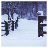 Schneebedecktes Dorf des Winters in Russland stockfotos