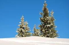 Schneeberg, Austria, escena del invierno Foto de archivo