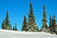 Schneeberg, Austria, Winter scene Stock Photography