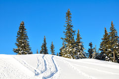 Schneeberg, Austria, Winter scene Royalty Free Stock Photography