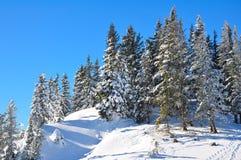 Schneeberg, Austria, Winter scene Stock Image