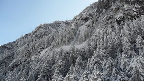 Schneeberg, Porzellan Lizenzfreies Stockbild