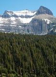 Schneeberg und -wälder Stockfotografie