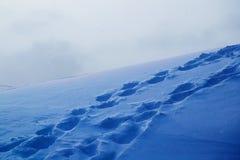 Schneebeschaffenheit mit Fu?drucken stockbild