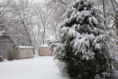 Schneeblizzard Stockfotos