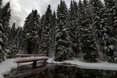 Schneebrücke Stockfoto
