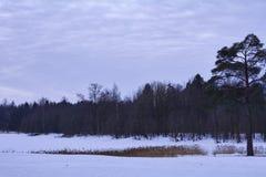 Schneedecke auf einem gefrorenen See lizenzfreies stockbild
