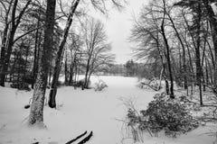 Schneedecken verloren See in Groton, Massachusetts, Middlesex County lizenzfreies stockfoto