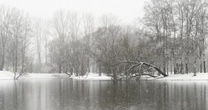 Schneefälle über dem See stock video