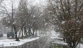 Schneefälle Stockbild