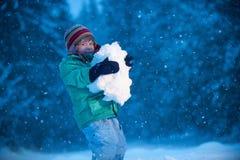 schneefälle Stockfotos