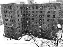 Schneefälle in Bronx lizenzfreies stockbild