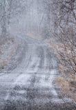 Schneefälle in der Landschaft Stockbild