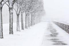 Schneefälle in der Stadt Park in St Petersburg Russland Stockbilder