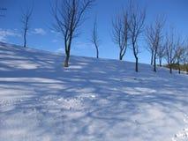 Schneefälle an einem Tag des Winters lizenzfreie stockbilder