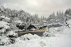 Schneefälle in großem Fluss in Avalon Peninsula, Neufundland, Kanada Lizenzfreie Stockfotografie