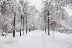 Schneefälle im Park, Straße des verschneiten Winters, Fahrradzeichen, Schnee umfassten Baumlandschaft Konzept des schlechten Wett Lizenzfreie Stockfotografie