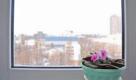 Schneefälle ist außerhalb des Fensters Stockbilder