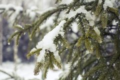Schneefälle in Moskau, Russland Russischer Winter Lizenzfreie Stockbilder