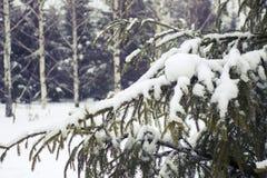 Schneefälle in Moskau, Russland Russischer Winter Lizenzfreie Stockfotos