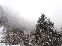 Schneefälle in Mushkpuri, KPK, Abbotabad Lizenzfreies Stockfoto