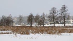Schneefälle in Viljandi Im Vordergrund gefrorener Viljandi See, Schilf und einige Eichen, weitere Viljandi-Stadt Lizenzfreie Stockfotos