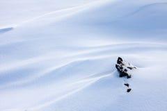 Schneefeld Stockfotografie