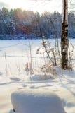 Schneefeld mit Wald auf Hintergrund Stockfotos