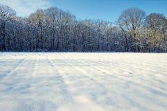 Schneefeld und -wald Stockfoto