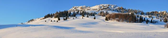 Schneefelder stockbild