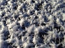 Schneeflocken auf dem Eis Lizenzfreies Stockbild