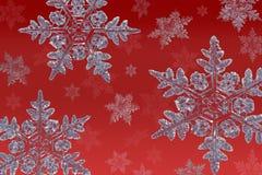 Schneeflocken auf Rot Stockfotografie