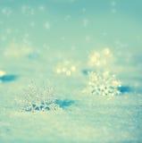Schneeflocken im Winter Lizenzfreies Stockbild